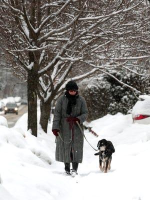 Suzanne Warren and her dog Homer walk along Western Avenue in Morristown. February 17, 2015.