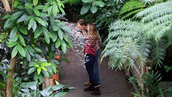 The Bolz Conservatory at Olbrich Botanical Gardens in Madison features more than 650 tropical plants.