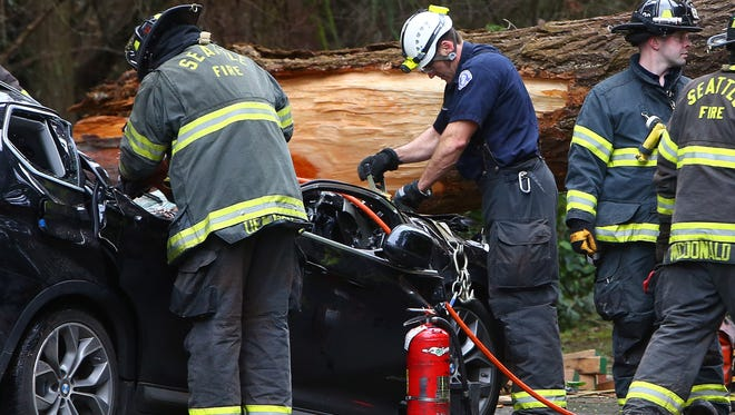 Seattle Fire and emergency crews work to extract the body of a man who died when a tree fell on his car at Seward Park, near Seattle, Wash., Sunday, March 13, 2016.