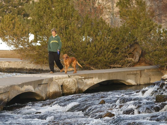 Dogs and owners are invited to River Dog Fest Saturday at Giant Springs State Park.