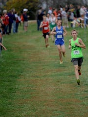 Wilson Memorial's Josh Wilt heads down a hill during the Group 2A East cross country championships on Wednesday, Nov. 5, 2014, at Panorama Farms in Earlysville.