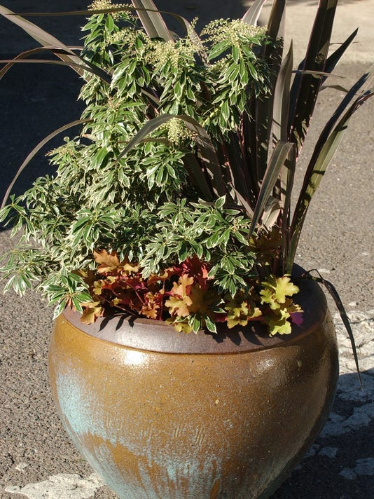 container fall winter plants
