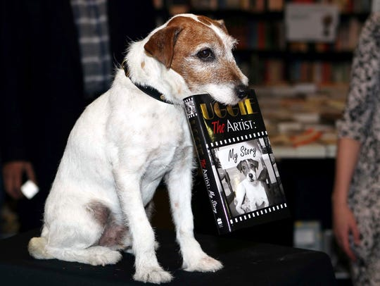 Uggie the Jack Russell terrier, a star in the Oscar-winning