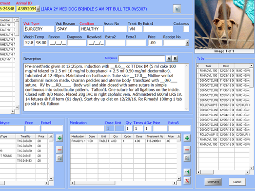 Maricopa County Animal Care & Control records document