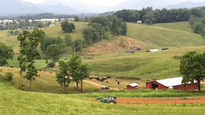 Buncombe County government is working to preserve Ridgeview Farms in Alexander.