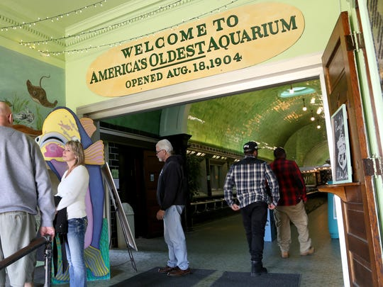 Belle Isle Aquarium on the Island in Detroit.  In 2015 it was the 4th busiest cultural attraction in metro Detroit