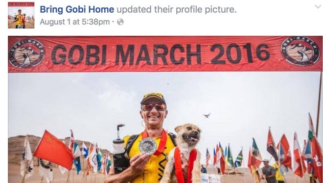A stray dog won the heart of an extreme marathon runner, after tagging along while he raced across the Gobi desert in China.
