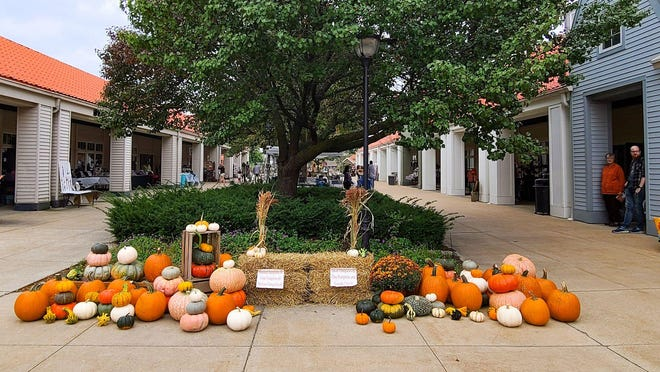 Pumpkins are lined up for shoppers to pick at The Market at Holland Town Center Saturday, Oct. 10. The center will host two holiday markets this year.