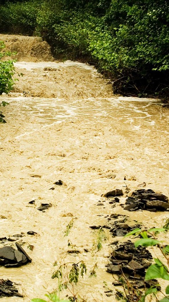 Area trout streams are likely to look like this Saturday.