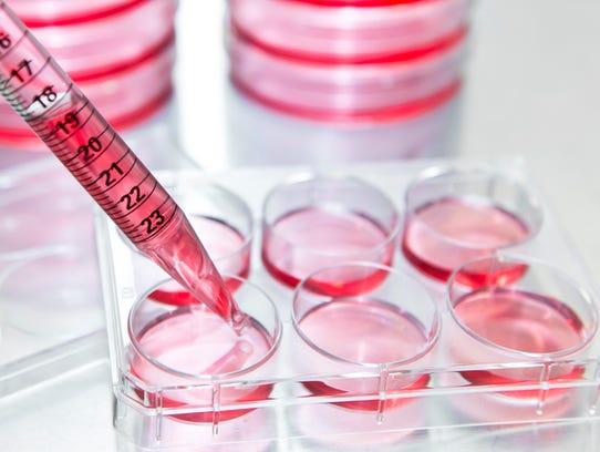 Regenerative medicine is a rapidly developing field
