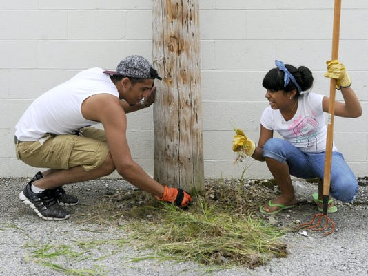 Kalisha Cabrera, 11, right, is grossed out as she and Oliver DeLarosa, 19, clear weeds from a pole off of West Clarke Ave in York city on Friday. The duo were part of multiple church youth groups who were participating in a cleanup through the York Rescue Mission, who partners with WeCo, a marketing designation for the shopping and dining area immediately west of the Codorus.