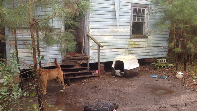 Deputies seized many dogs from this Bayside Road home in Accomack County in January.