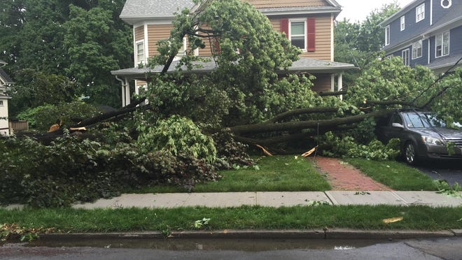 A tree crashed onto a car on Grove Street in Pleasantville, after storms move through on Tuesday night.