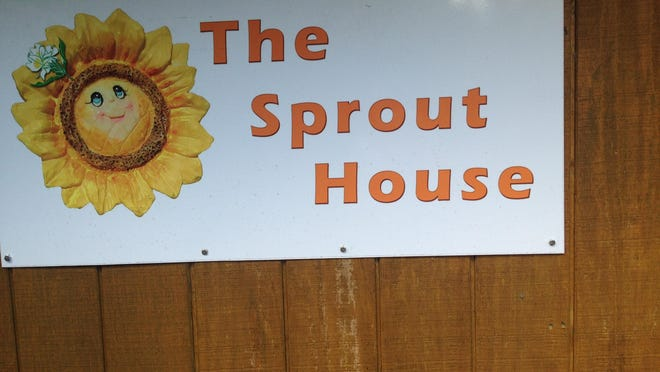 The Sprout House — where the Sprout Queen works her magic and grows sunflower greens used in this week's recipe