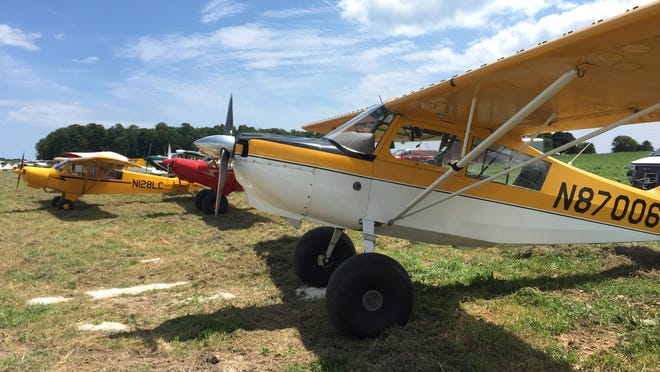 One of the 37 planes resting at Saxon Homestead Farm shines in the sun.