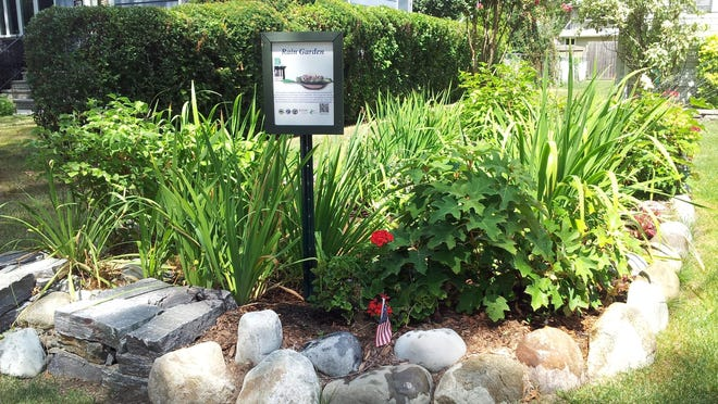 Rain gardens can be planted with a variety of different native and ornamental plants.