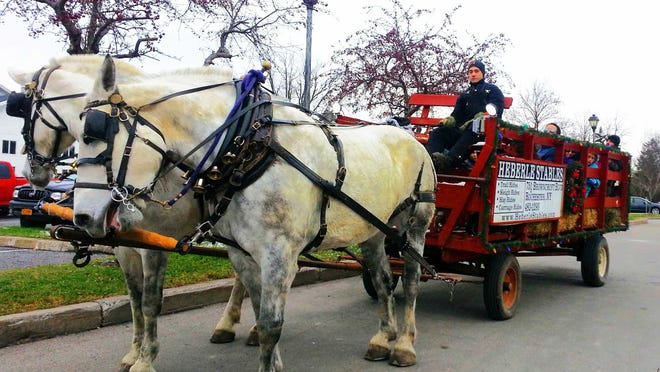 Horse-drawn carriage at Christmas in the Village