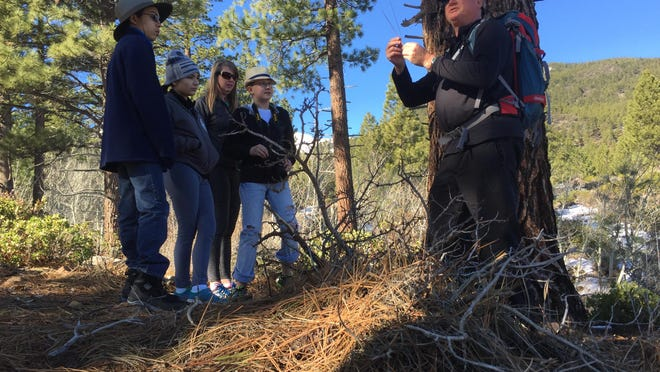 Brad Phelps, a volunteer hike leader at the Galena Creek Visitor Center, discusses tree and plant life in the mountains.