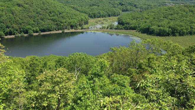 View from the Knob at Ice Pond