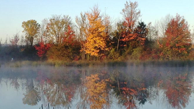 Dead Creek Wildlife Management Area in Addison is one of Vermont's premier birding and waterfowl conservation areas.