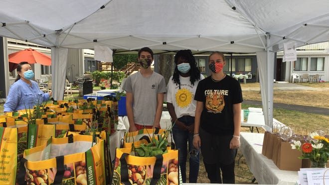 Local high school students Adam Pakniat, Kiara Dickey and Emily Rose Walsh worked for the farmers' market at Algonquin Heights this summer.