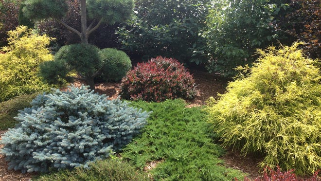 Shrubs offer a number of wonderful benefits in the yard and landscape, including privacy, color, texture, food for wildlife, shape and form. Use a variety of colors, shapes and sizes together, like this elegant shrub garden at West of the Lake Gardens, Manitowoc, to create a stunning display.