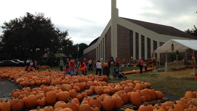 Families search for the perfect pumpkin at Indian River City United Methodist Church in Titusville. The church's pumpkin patch opens Oct. 15.