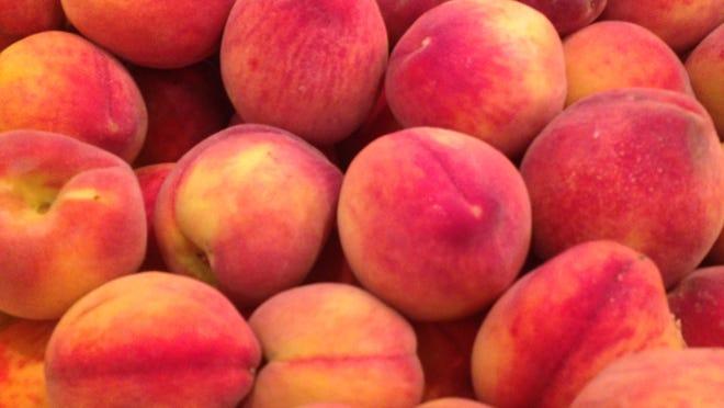 Tree-ripened Florida peaches are in season in SWFL.