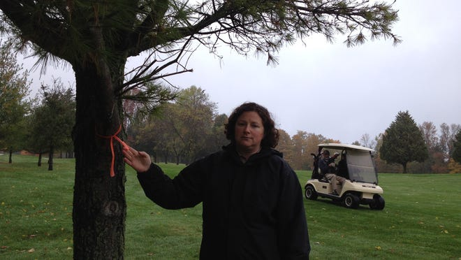 Peninsula State Park Superintendent Kelli Bruns stands by one of the 139 trees tagged to be removed at the golf course.