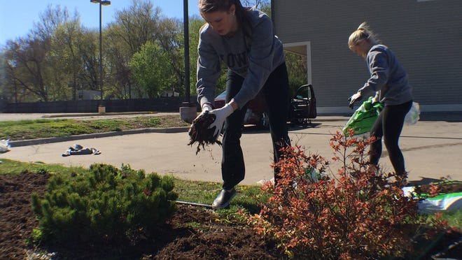 Freshmen Christina Buttenham, left, and Whitney Jennings, right, guards for the Iowa women's basketball team, spread mulch on flower beds outside Shelter House at 429 Southgate Ave. on Sunday during the UI Day of Caring.