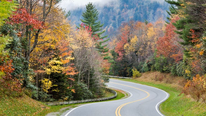 Newfound Gap Road/U.S. 441 is the only road that runs across Great Smoky Mountains National Park, changing in elevation by more than 3,500 feet.