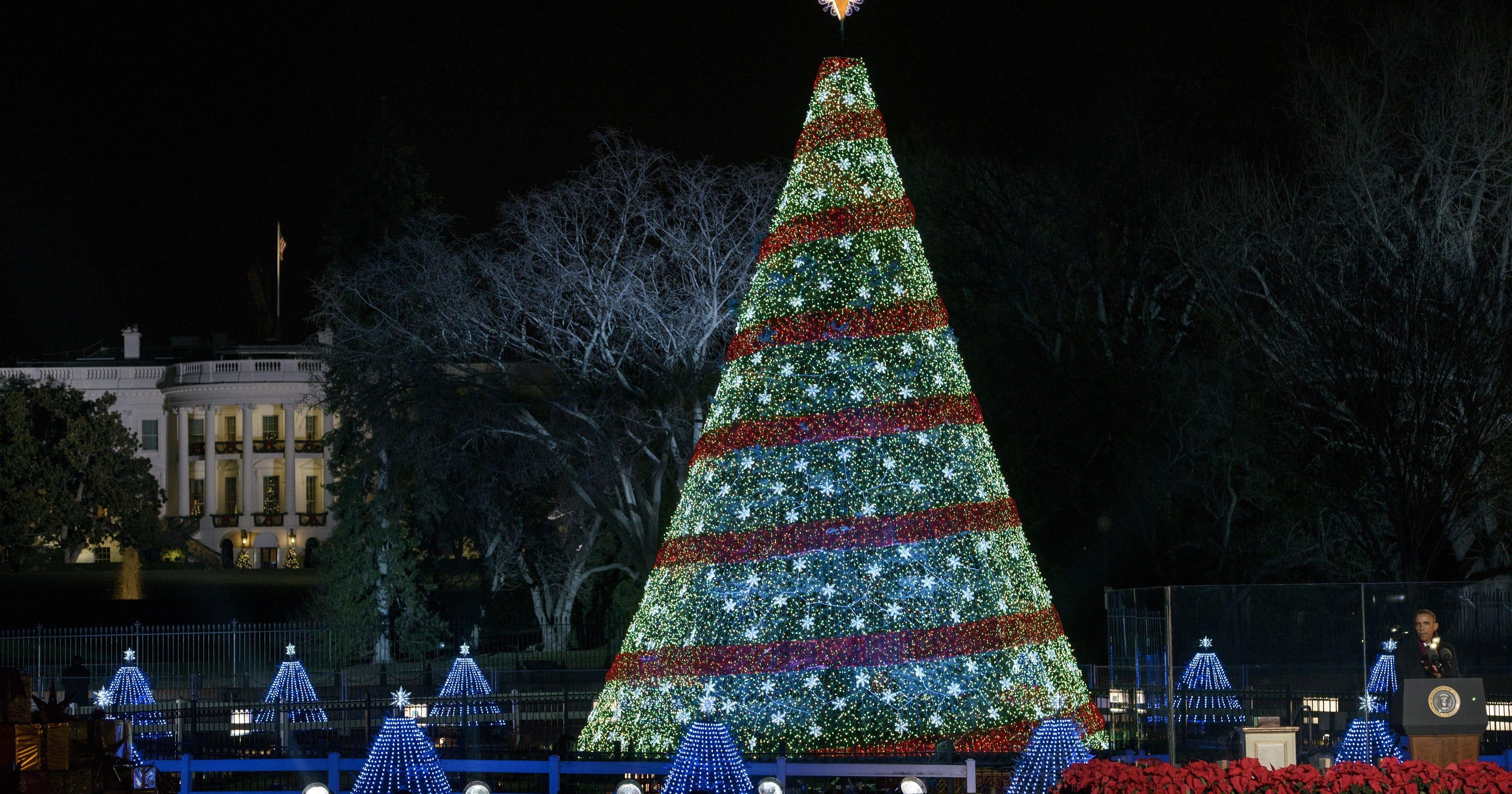 Christmas Tree Poughkeepsie