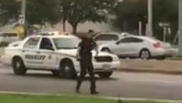 Lee County Sheriff's Office deputy helps ducks cross US. 41.
