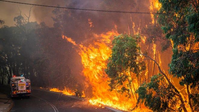 A wildfire roars along a roadside in Perth Hills in western Australia on Sunday, Jan. 12, 2014.