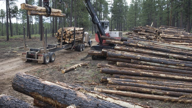 The Four Forest plan — or 4FRI — was intended to thin 1 million acres over 20 years within a 2.4 million-acre expanse stretching roughly from the Grand Canyon to New Mexico along the Mogollon Rim.