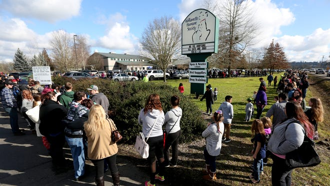 """Hundreds line up the """"Full Hearts, Empty Kennels"""" event at the Willamette Humane Society in Salem on Saturday, Feb. 11, 2017. Adoption fees were waived for all cats and dogs at the shelter this weekend."""