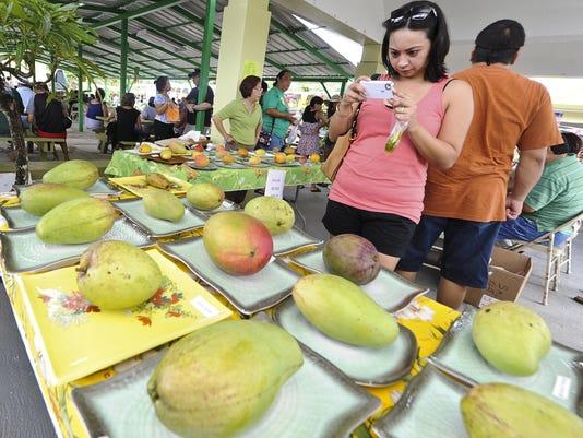 Mango Festival 07