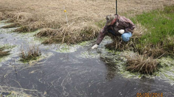 A water resource specialist takes water samples of manure runoff at a town of Brighton farm May 6 in this photo provided by the Marathon County Conservation, Planning and Zoning Department.
