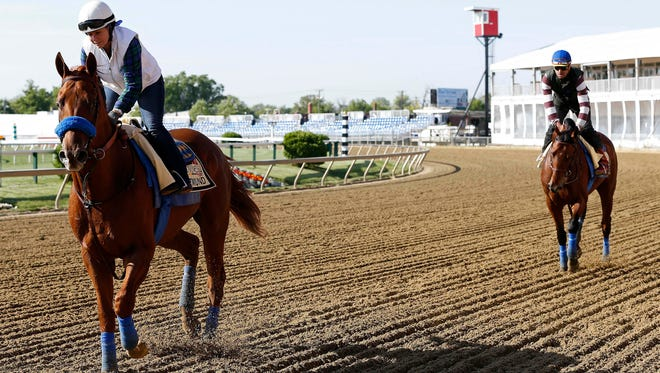 Dortmund (left) and Kentucky Derby winner American Pharoah (right) trot on the track during a workout for the 140th Preakness Stakes at Pimlico Race Course.