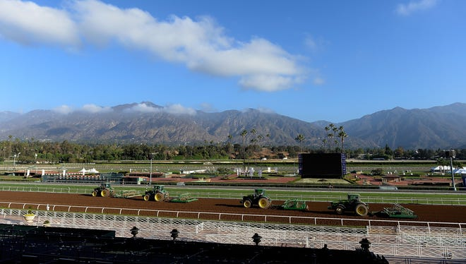 Tractors groom the surface in preparation for the 2014 Breeders' Cup at Santa Anita Park on October 27, 2014 in Arcadia, California. Iowa-based Donegal Racing will have three entries through the weekend of multimillion-dollar races.