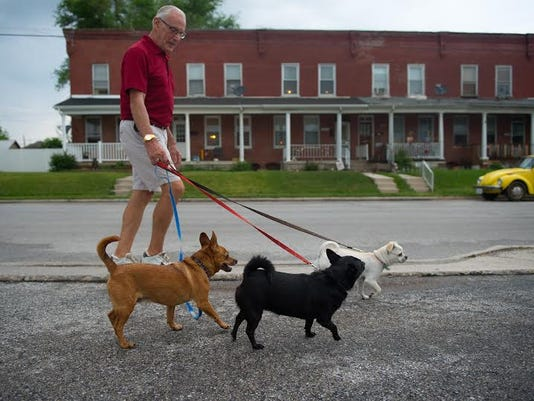 Hanover resident Tom Good walks Rusty (brown), Ebe (black), and Pebbles on Pine Street after the first round of rain May 18.
