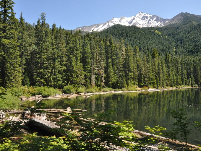 A view of Pamelia Lake and Mount Jefferson.