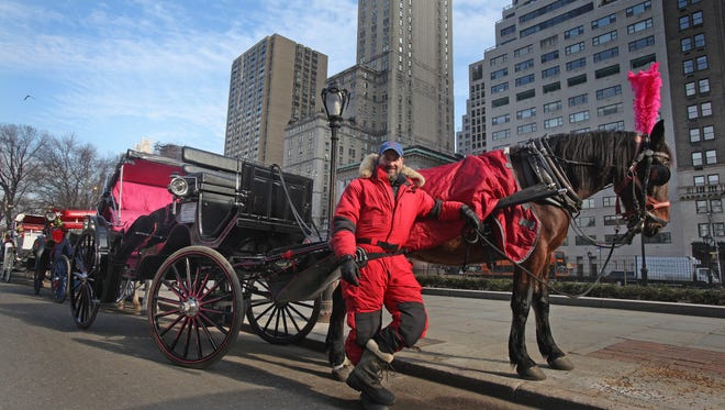 Colm McKeever of West Nyack, N.Y., with his horse, Hudson, on Jan. 17, 2014, at Central Park in Manhattan. McKeever runs a horse-drawn carriage business in New York City.
