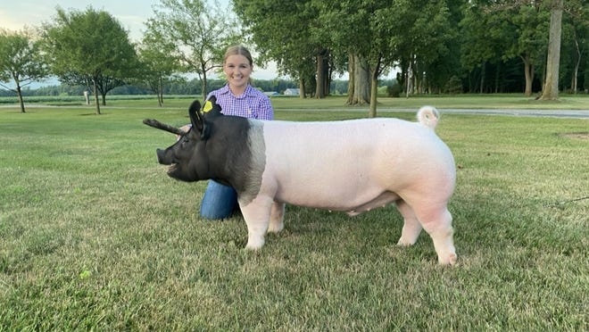 "Lilli Kastel of Deerfield kneels behind her 280-pound barrow pig called ""Bucket Head Fred"" that she won showmanship with in the 4-H virtual learning showcase this week. She bought the hog from breeder Jeff Winter of Dundee."