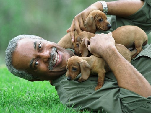 Pets can improve retirees' physical, emotional health001
