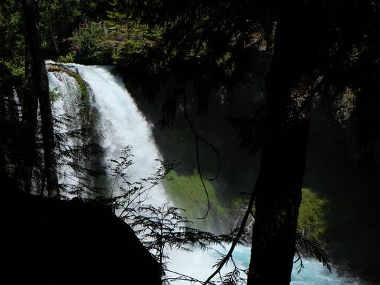 The McKenzie River Trail offers some of the best mountain biking in Oregon.