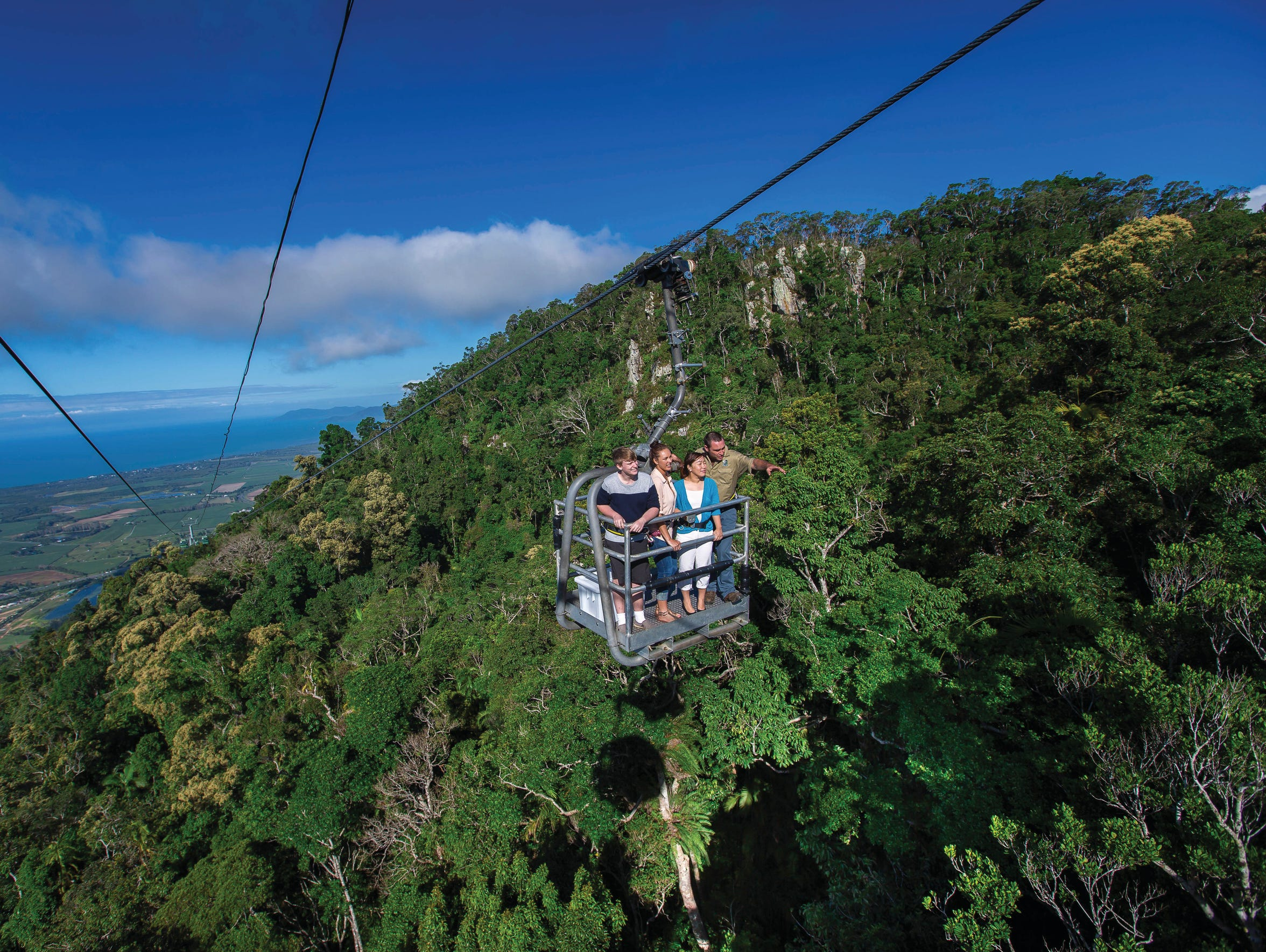 The Skyrail cableway glides over the rainforest to