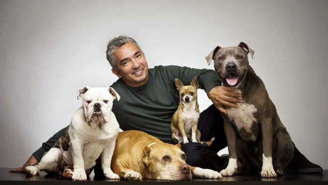 "TV sensation Cesar Millan, ""The Dog Whisperer,"" is joining the Define American campaign to get undocumented immigrants to ""come out"" and publicly declare their status."