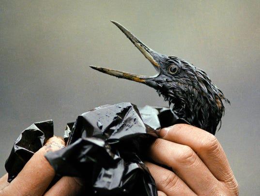 AP Exxon Valdez 25th Anniversary