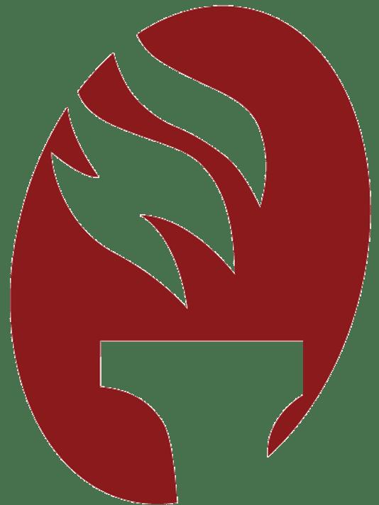 636215537699865395-FSView-Torch-Logo-1-.png